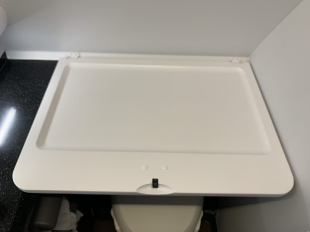 ANA A380(フライングホヌ) プレミアムエコノミー トイレ おむつ台