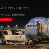 ANA A380(フライングホヌ) 成田~ホノルル搭乗記