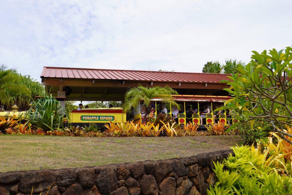 ハワイ ドール・プランテーション パイナップル・エクスプレス
