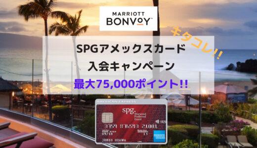 SPGアメックスの入会キャンペーンが激アツ!! 最大75,000ポイントもらえます!!